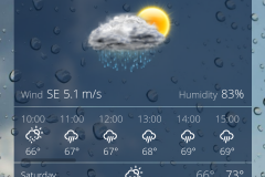Weather in New Your